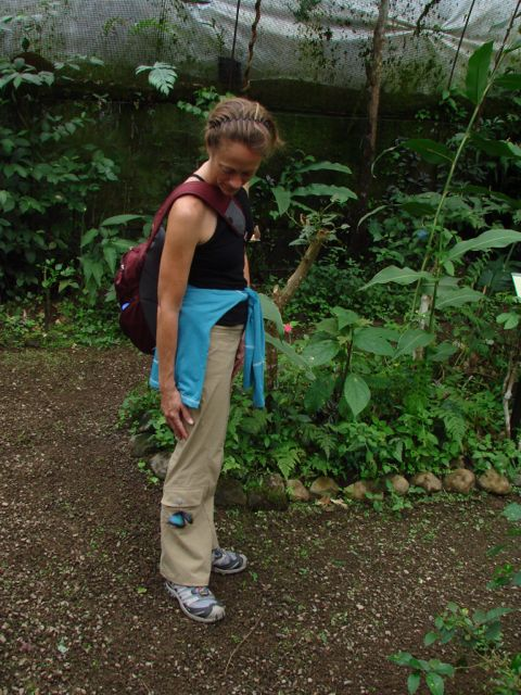 Kenda and the Blue Morpho