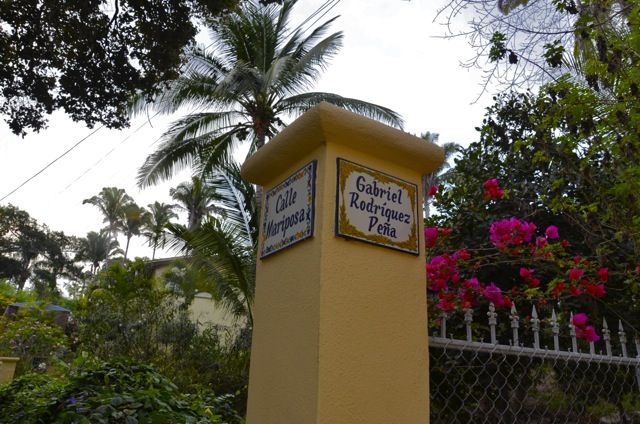 Gringo Hill Sayulita