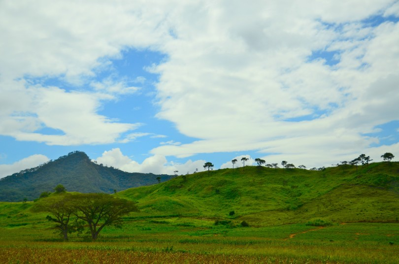 50 Shades of Green: On the Road from Oaxaca to Chiapas