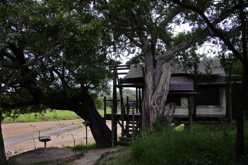 Tamboti Rest Camp