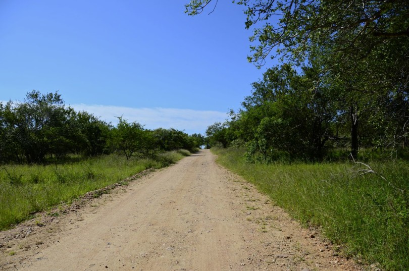 Erdvark Lane in Marloth Park, South Africa
