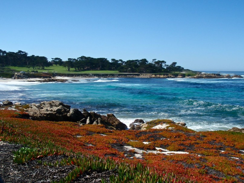 Go Play Outside! Our top picks for Pacific Grove outdoor experiences