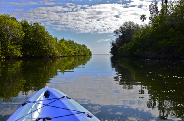 Kayaking Indian River Lagoon