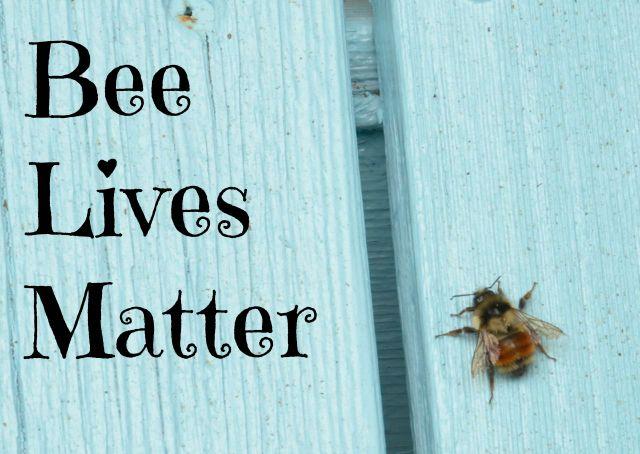 Bee Lives Matter