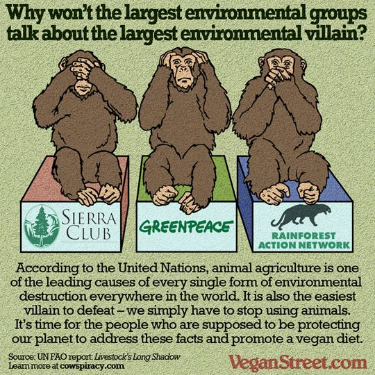 _environmental-groups-and-animal-ag
